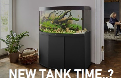 Browse and buy our favourite aquariums